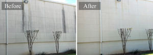 Commercial Building Pressure Washing #2