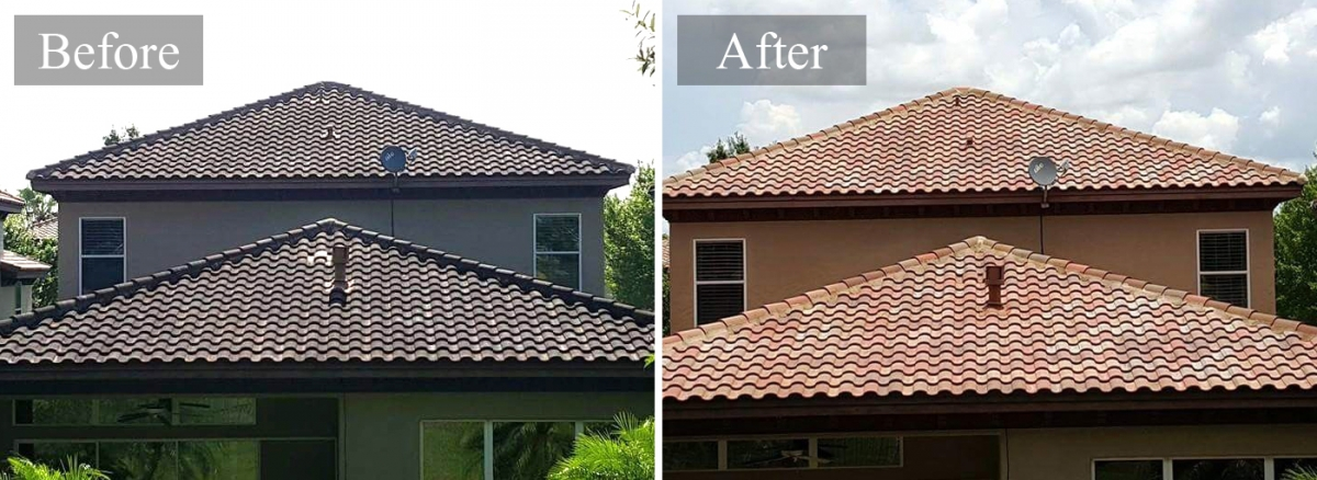 Roof Soft Washing Roof Cleaning Roof Cleaner In San