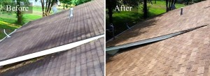 Roof Pressure Washing #5