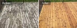 Fence and Deck Pressure Washing #2